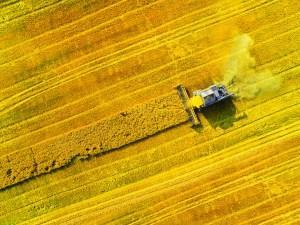 Sigurimi i fermerëve, a mund të bëhet dhe si?