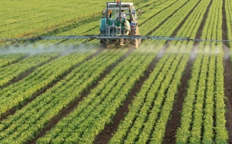 Pesha e bujqësisë në ekonomi po bie